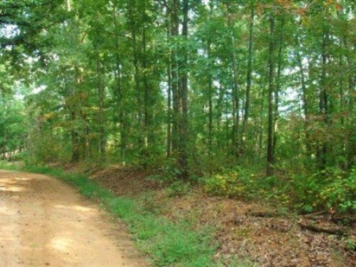 9.63 Acre Sugartree Falls : Waynesboro : Wayne County : Tennessee