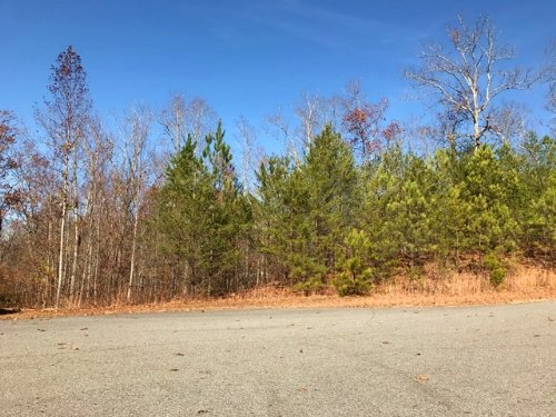 Lot 5, 5.002 +/- Acres : Fairmount : Bartow County : Georgia