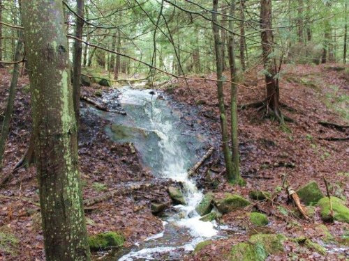 176 Acres Timberland Adirondacks : Croghan : Lewis County : New York