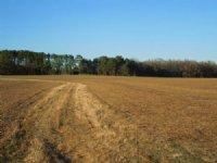 Weathers Properties : Wendell : Wake County : North Carolina