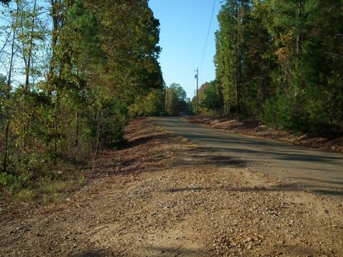 Dividing Ridge : Gore Springs : Grenada County : Mississippi