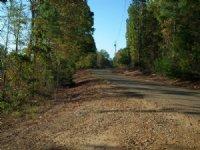 Dividing Ridge : Gore Springs : Grenada County : Mississippi