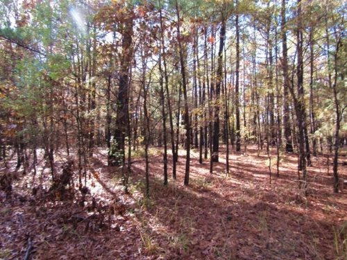 9 Acres (#30537) : Clarksville : Red River County : Texas