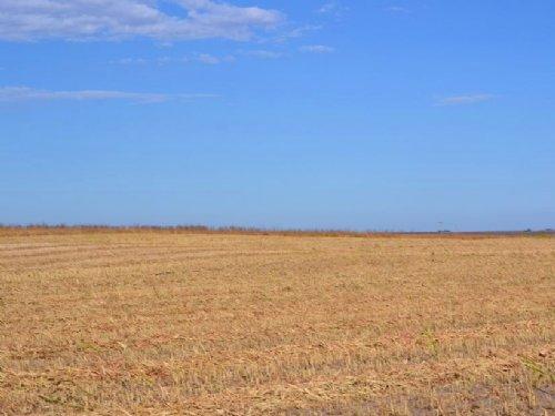 Green Acres Ranch Dryalnd Farm : Sidney : Cheyenne County : Nebraska