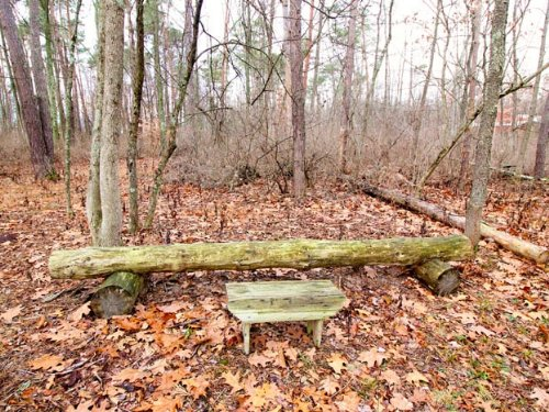 6.8 Acres Land In Muncy : Muncy : Northumberland County : Pennsylvania