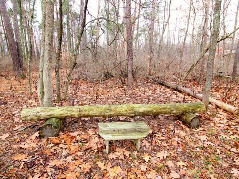 6.8 Acres Land In Muncy : Muncy : Northumberland County : Pennsylvania