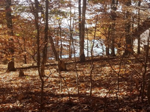 2.47 Acre Cherokee Lake View Lot : Mooresburg : Hawkins County : Tennessee