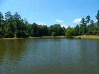 Turn-Key Recreational Retreat : Danville : Wilkinson County : Georgia