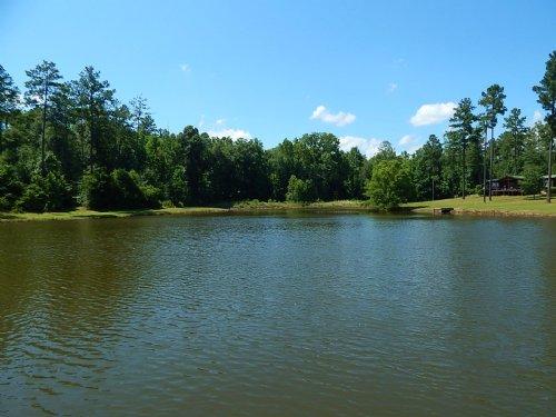 Cabin, Pond, & Big Deer : Danville : Wilkinson County : Georgia