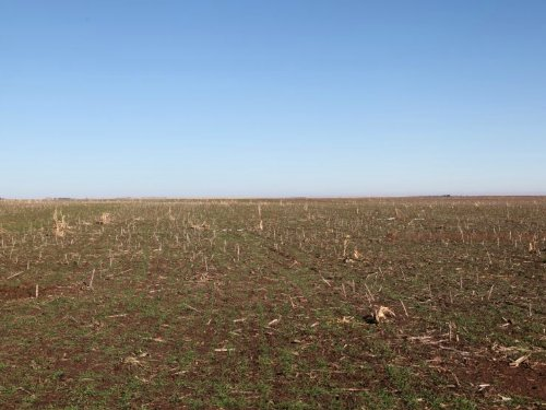 Stutzman Dryalnd, Pasture & Improve : Venango : Perkins County : Nebraska