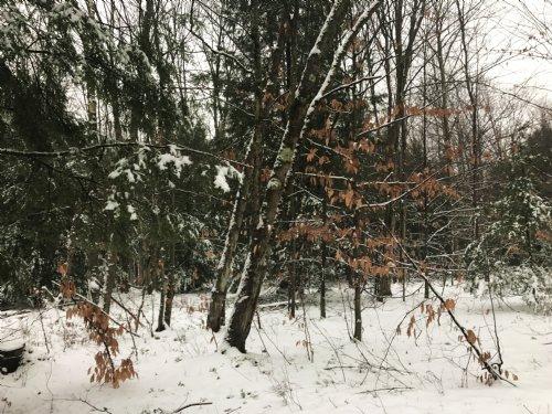 Hemlock Acres : Altmar : Oswego County : New York