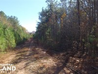 Recreational Land And Homesite : Abbeville : Abbeville County : South Carolina