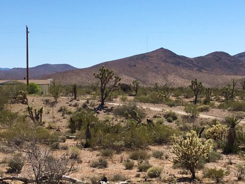 Close To So Many Attractions : Dolan Springs : Mohave County : Arizona