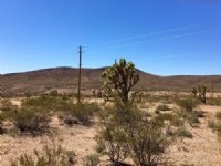 Looking For Land With Water & Power : Dolan Springs : Mohave County : Arizona