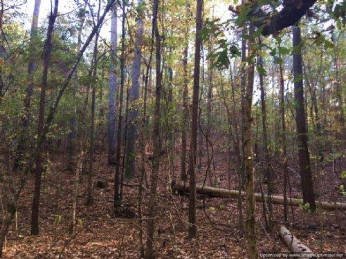 94± Acres : Thomastown : Leake County : Mississippi