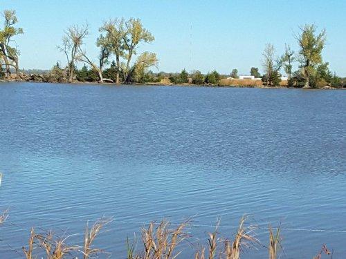 Mccain Sealed Bid : Burrton : Reno County : Kansas