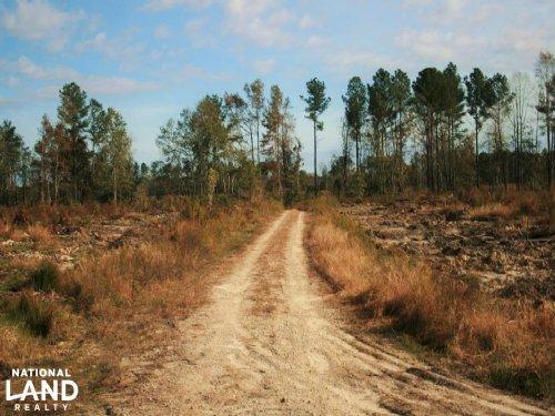 Recreational Land Near Chowan River : Harrellsville : Hertford County : North Carolina