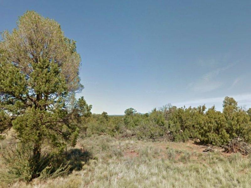 1 Acre In Williams, Az : Williams : Coconino County : Arizona