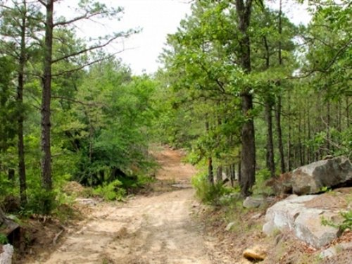 8.65 Acre Trophy Ridge Iii : Clayton : Pushmataha County : Oklahoma
