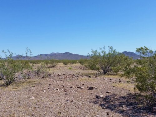 Take The Truck Out To The Desert : Golden Valley : Mohave County : Arizona