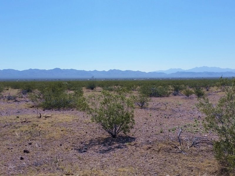 Look Your Dream Land : Golden Valley : Mohave County : Arizona