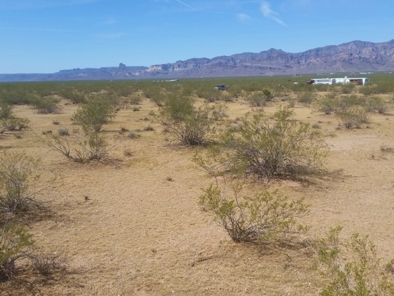 Flat With Mountain Views : Golden Valley : Mohave County : Arizona