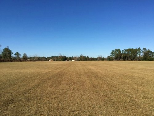 24.30 Acre Hay Field : Jasper : Hamilton County : Florida
