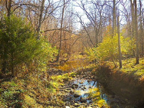 Nevada Dr - 6.7 Acres : Winchester : Adams County : Ohio