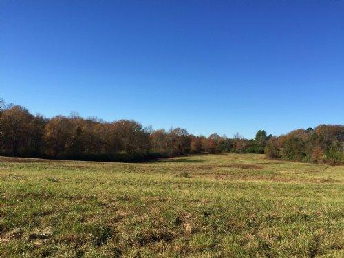 Cleveland Creek Tract : Fair Play : Oconee County : South Carolina