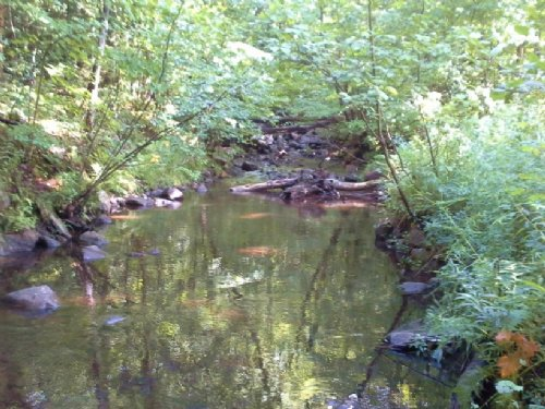108 Acres Hunting Land In Bellmont : Malone : Franklin County : New York