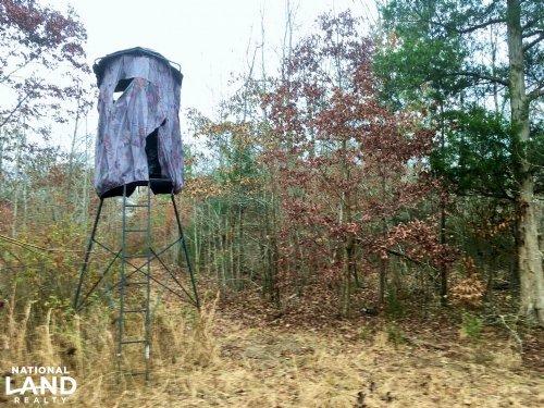 Lowrys Hunting Land : Lowrys : Chester County : South Carolina