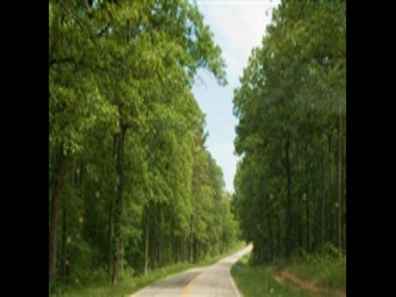 25 Acre Blue Sky Ranch, Creek : Winona : Shannon County : Missouri