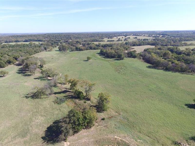 Parcel 4: This 16.96 Acres Is A : Denison : Grayson County : Texas