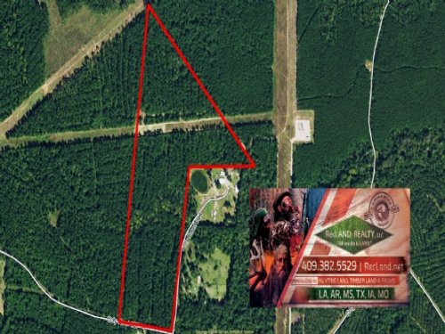 52 Ac - Timberland For Home Site : Jasper County : Texas