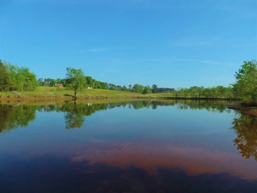 Price Reduced, Cattle Farm, 2 Pon : Eatonton : Putnam County : Georgia