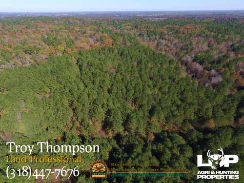 80 Acres Near Columbia : Columbia : Caldwell Parish : Louisiana