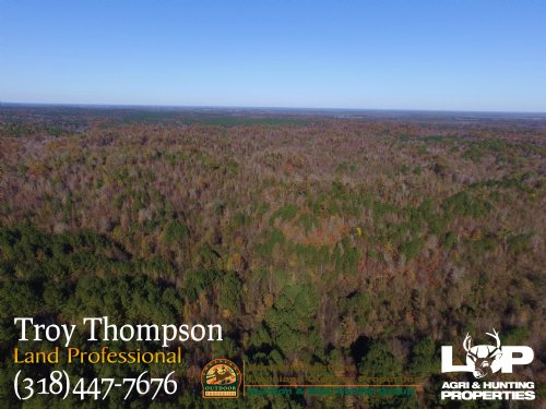647 Acres Near Cloumbia : Columbia : Caldwell Parish : Louisiana