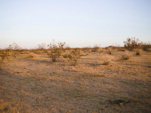 Amazing Desert Sunsets : Landers : San Bernardino County : California