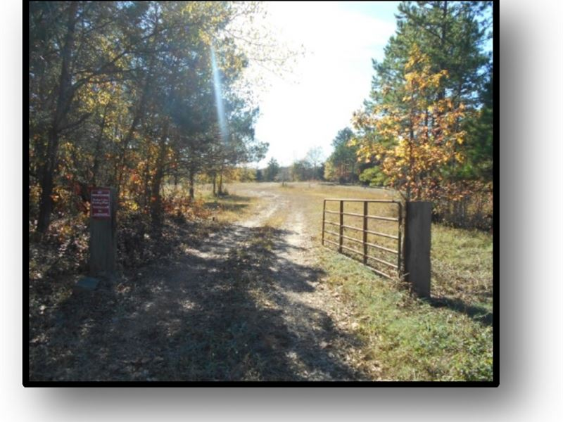 136.6 Acres In Lafayette County : Oxford : Lafayette County : Mississippi