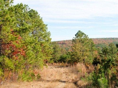 14.28 Acre Stone Creek Ranch : Wilburton : Latimer County : Oklahoma