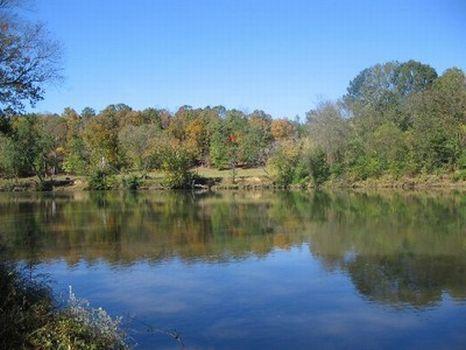 10-50 Acres on the Tallapoosa River : Alexander City : Tallapoosa County : Alabama