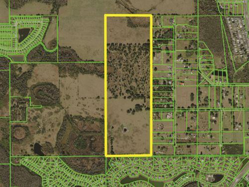 Residential Land Near Theme Parks : Kissimmee : Osceola County : Florida