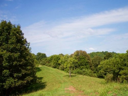 7.74 Acre Heritage Hollow : Spencer : Roane County : West Virginia