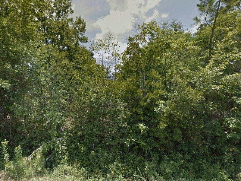 Vacant Lot In Mobile Homes Area : Gautier : Jackson County : Mississippi