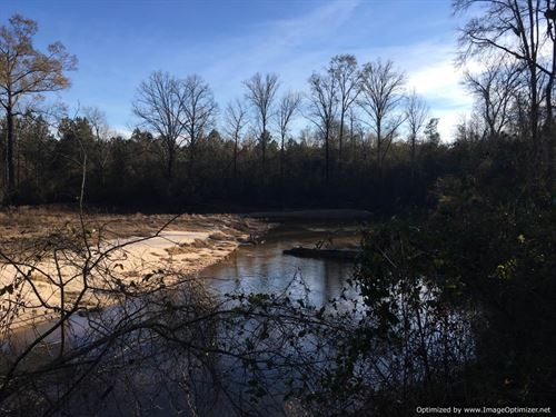 99+/- Acres Hunting And Timberland : Carthage : Leake County : Mississippi