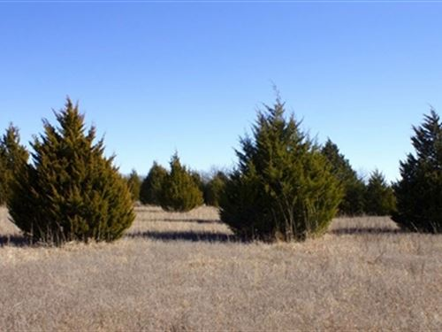 10.68 Acres - Montgomery Ranch : Ardmore : Love County : Oklahoma