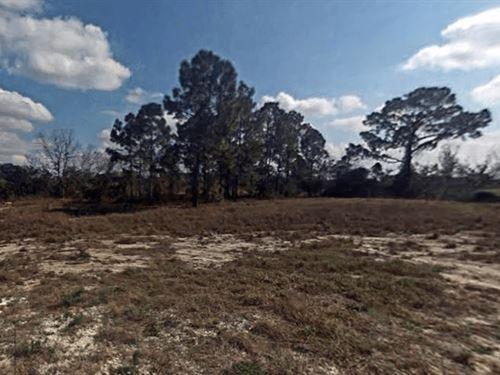 9,375 Sq.Ft Vacant Lot : Lake Placid : Highlands County : Florida
