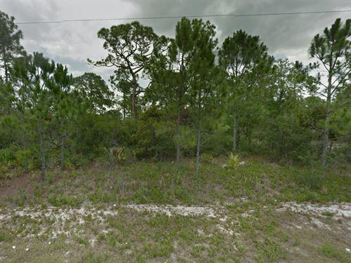 10,125 Sq.Ft. Lot : Lake Placid : Highlands County : Florida