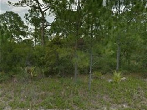 .23 Acre Residential Lot For Sale : Lake Placid : Highlands County : Florida