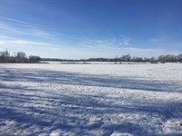 Land Auction - 59+/- Ac In 3 Tracts : New Lisbon : Henry County : Indiana